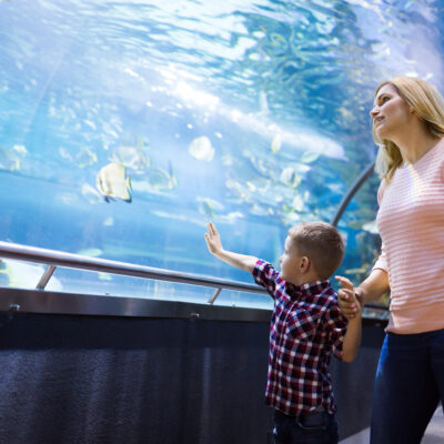 5 Easy Ways to Save Money on Family Memberships