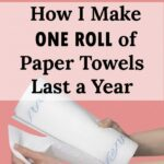 This post gave me some great ideas on how to avoid using paper towels!