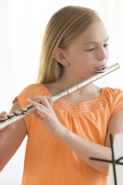 How much does a flute cost?
