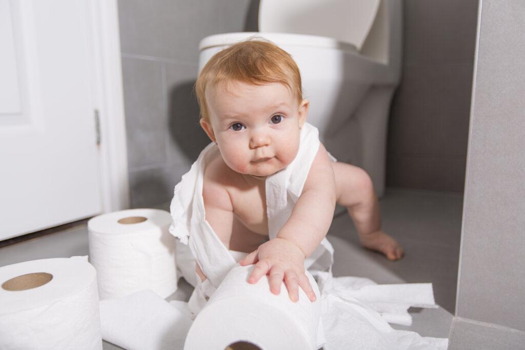 Aldi Willow Toilet Paper